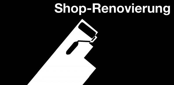 Renovierung1